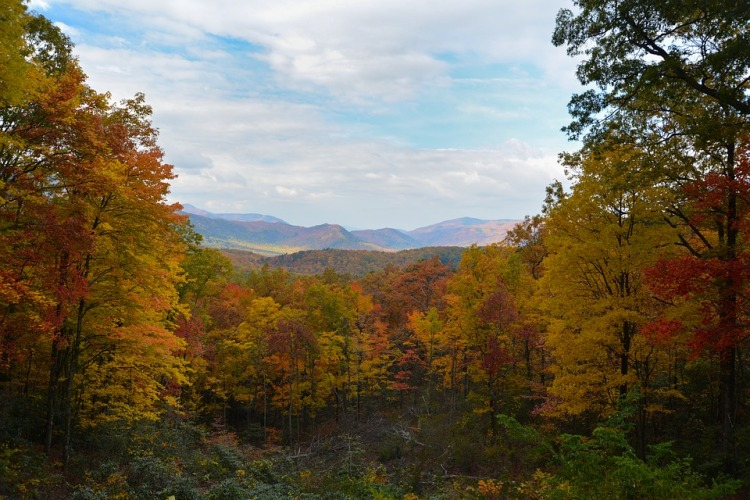 best place to visit this fall smoky mountains